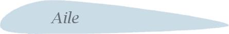 Forme Simplifiée d'une aile d'avion