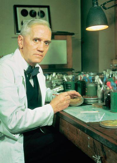 Alexander Fleming dans son laboratoire