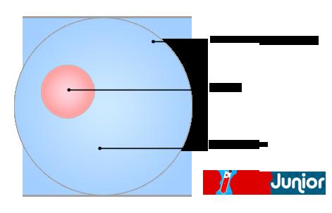 Schéma simplifié d'une cellule