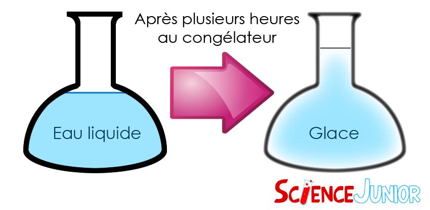 Passage de l'eau liquide à l'eau solide : ScienceJunior.fr