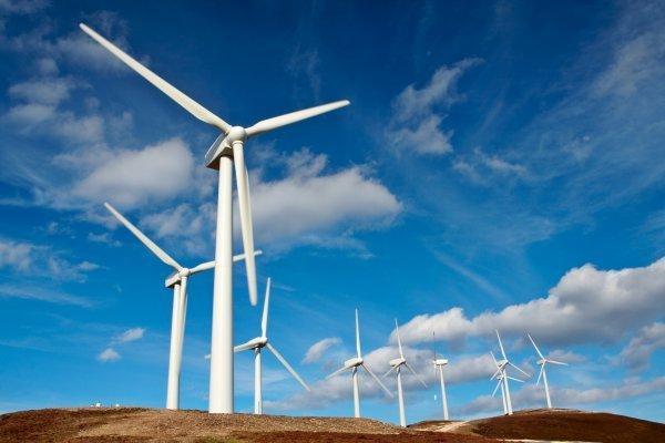 Une série d'éoliennes