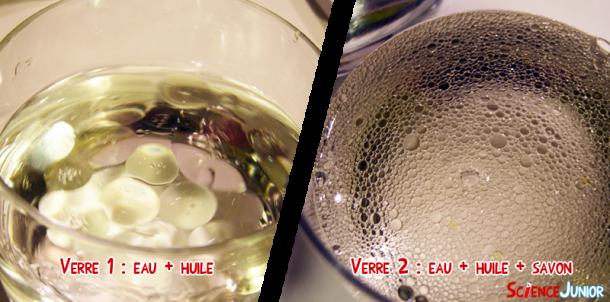 Comparaison des résultats : le verre 1 à gauche (eau + huile) et le verre 2 à droite (eau + huile + savon)