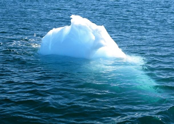 Un très petit glacier, appelé growler (ou Bourguignon)