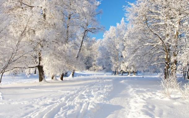 comment se forme la neige pdf