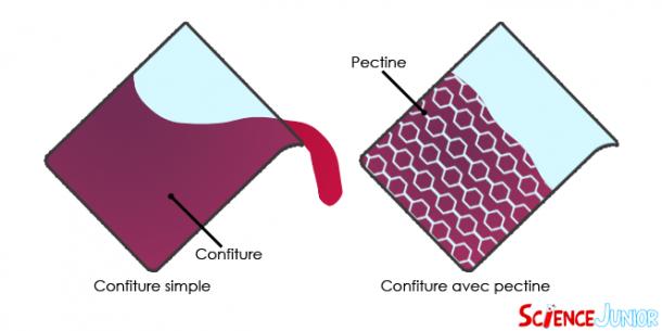Schéma de confiture avec et sans pectine